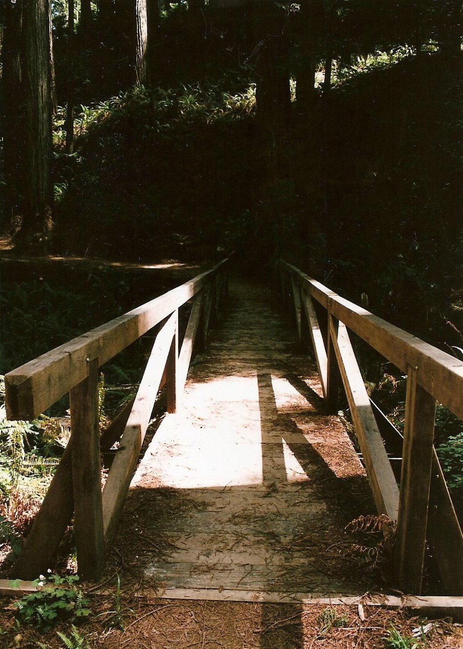 I LOVE THESE WOODEN BRIDGES